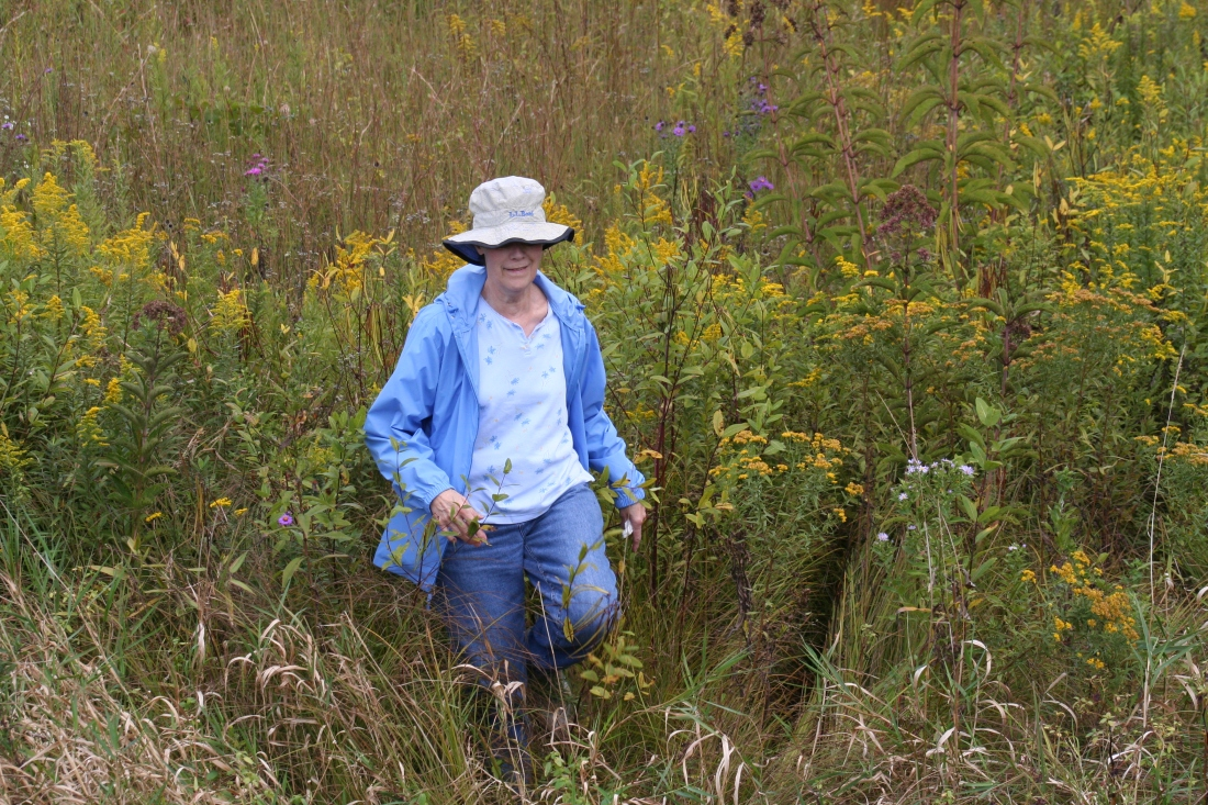 Mom in a meadow, on a beautiful afternoon together.